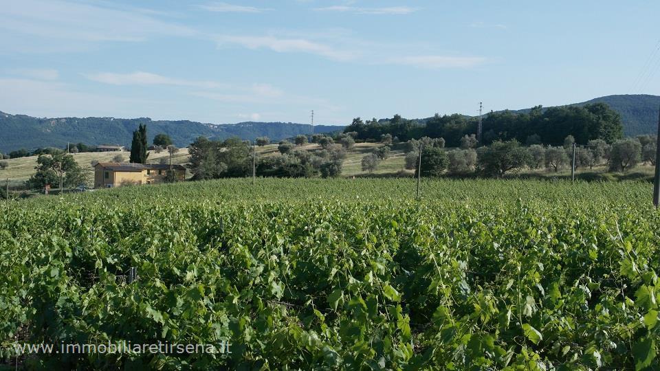 Azienda agricola in vendita a allerona tr rif aa61 - Diritto di prelazione su immobile confinante ...