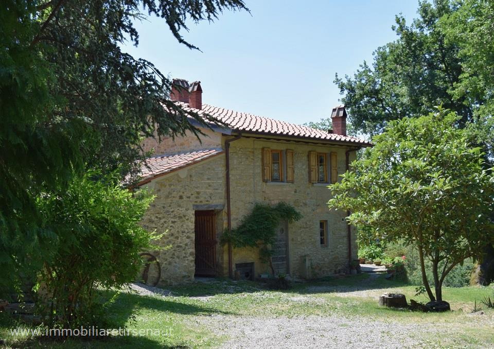 Rustico/Casale/Corte in Vendita Borgo San Lorenzo