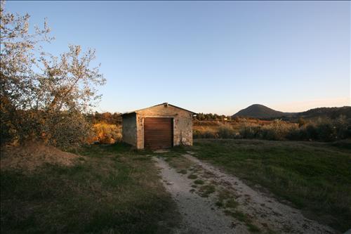 Azienda Agricola in vendita a Trequanda, 9999 locali, prezzo € 35.000 | Cambio Casa.it