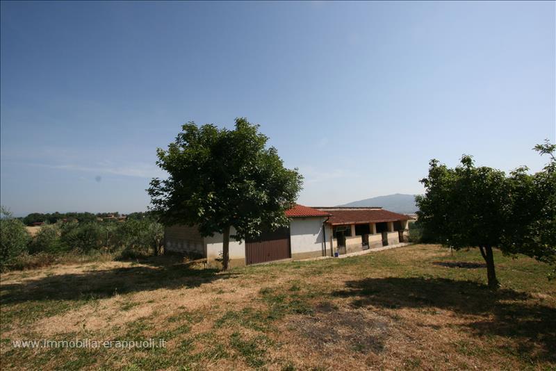 Soluzione Indipendente in vendita a Monte San Savino, 3 locali, prezzo € 270.000 | Cambio Casa.it