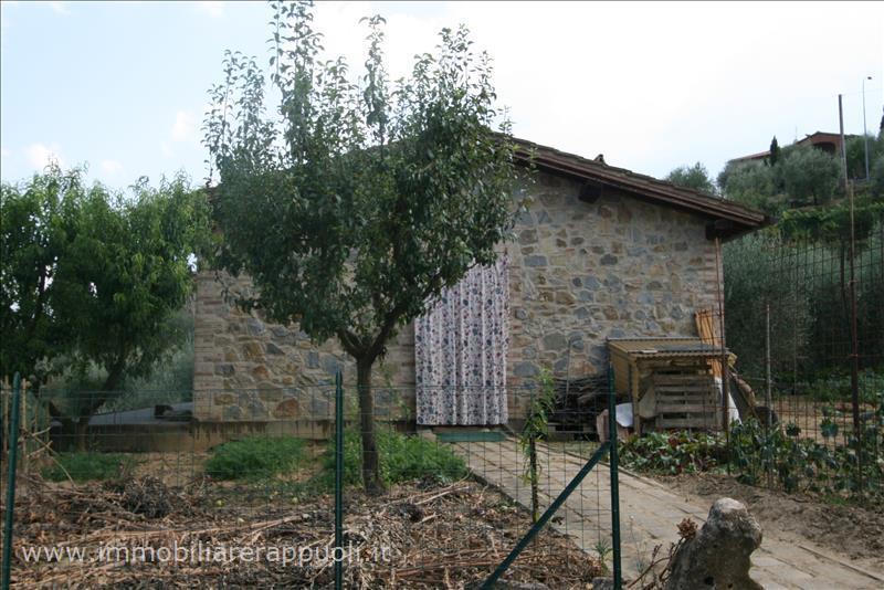 Azienda Agricola in Vendita a Sinalunga