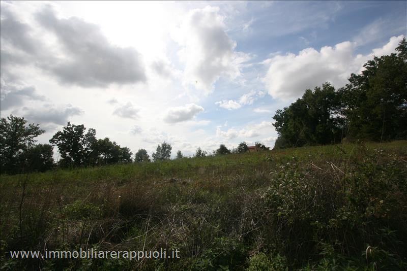 Terreno Agricolo in vendita a Foiano della Chiana, 9999 locali, Trattative riservate | Cambio Casa.it
