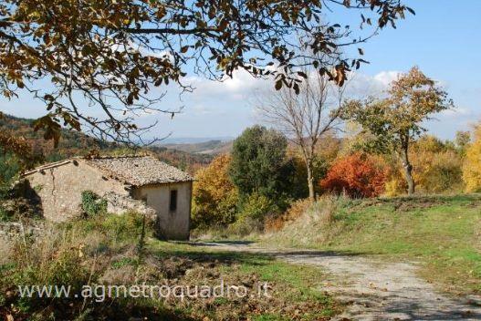 Rustico / Casale in vendita a Castiglione d'Orcia, 9999 locali, prezzo € 290.000 | CambioCasa.it