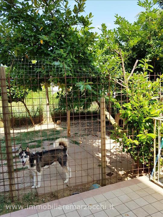 Appartamento Castelnuovo Berardenga AP1450