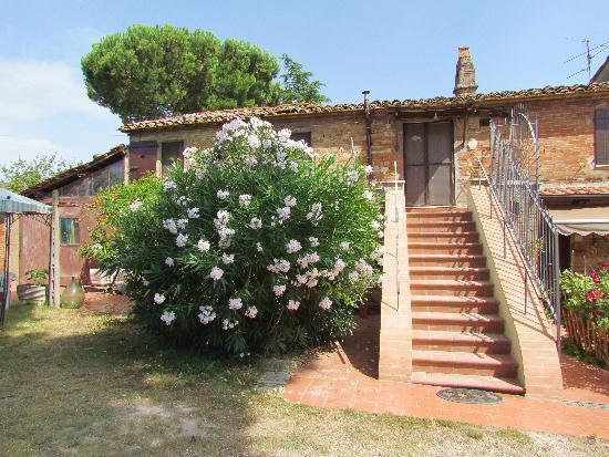 Rustico / Casale in vendita a Castiglione del Lago, 3 locali, prezzo € 250.000 | Cambiocasa.it