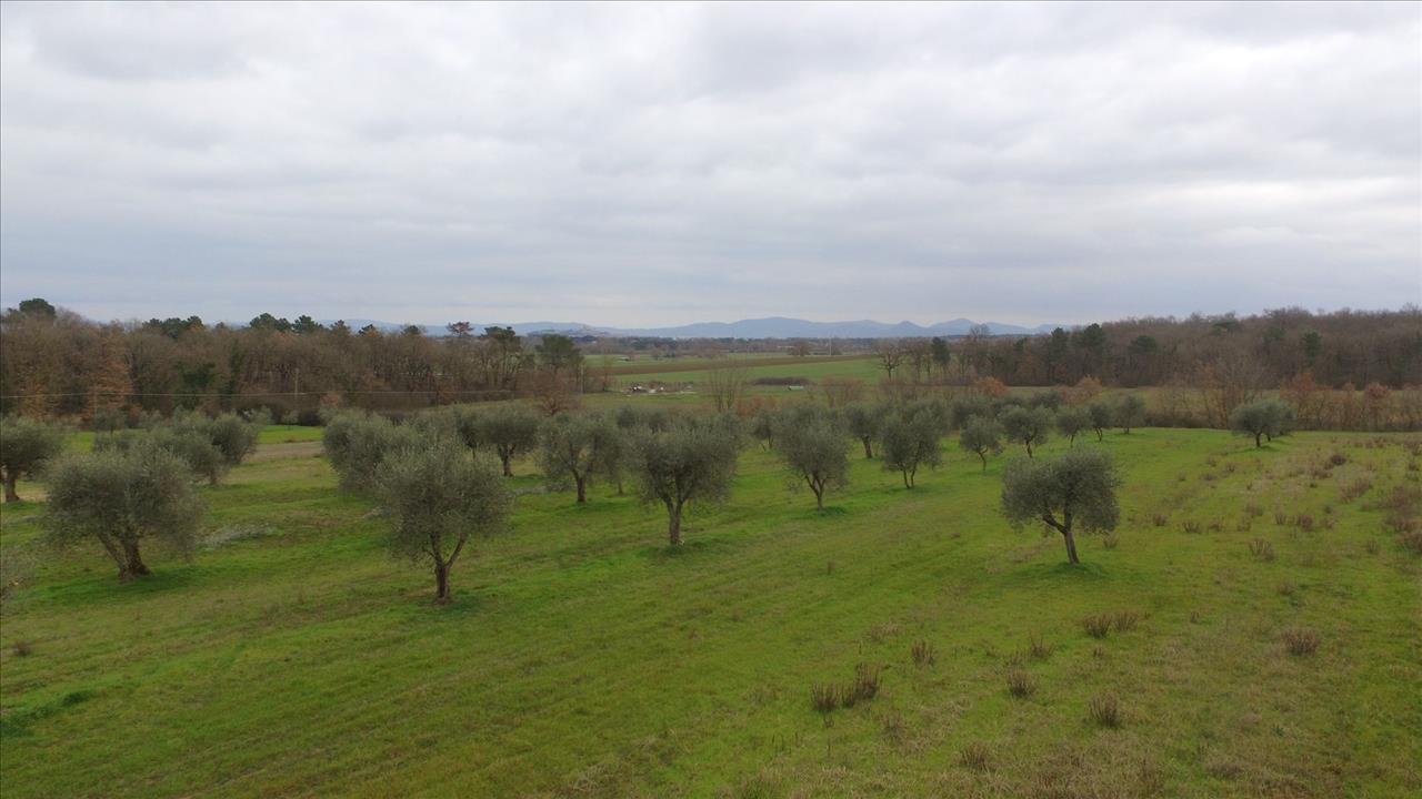 Vendita Terreno Residenziale Castiglione del Lago