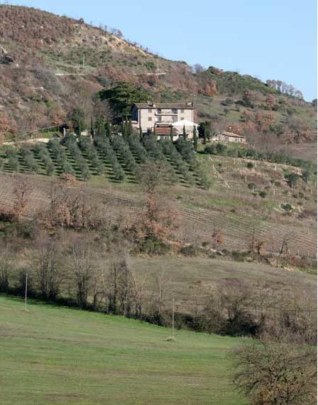 Rustico / Casale in vendita a Fabro, 14 locali, prezzo € 2.200.000 | CambioCasa.it